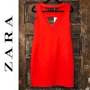 🎈NEW LISTING! NWT! ZARA WB BodyCon Orange Dress